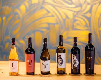 Lipovac vinery. The range of our wines